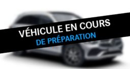 GLE 250 d 204ch Executive 4Matic 9G-Tronic MERCEDES-BENZ Occasion Diesel LE HAVRE